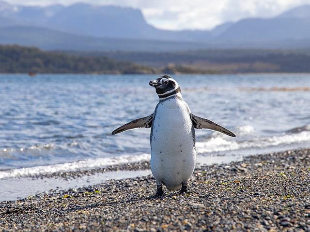 itinerari zaino in spalla in patagonia argentina